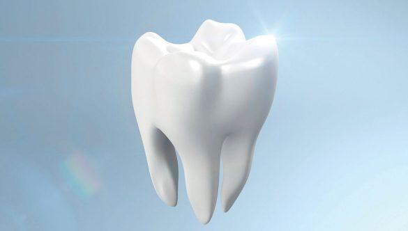 Izliječeni korijen zuba najbolji je implantat.